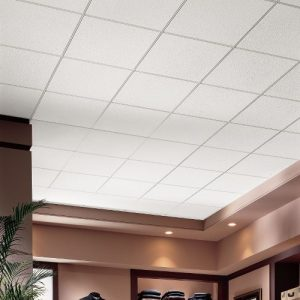 RS1775 Ceiling Tiles by Armstrong